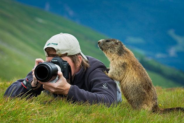 doğa fotoğrafları nasıl çekiliyor