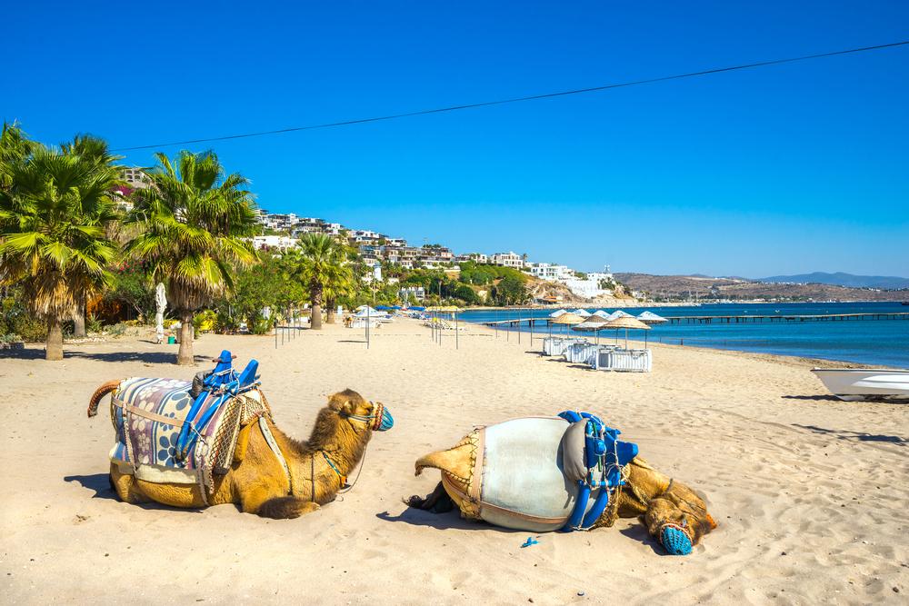 Türkiye'nin En Güzel Plajları camel beach bodrum
