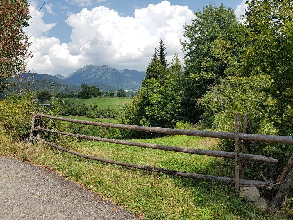 şavşat manzarası, artvin, köy fotoğrafı, orman, doğa